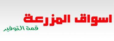 الشركة السعودية للتسويق