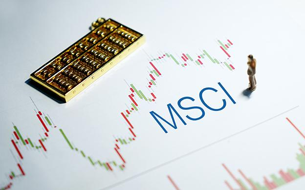 Here's what analysts are saying about Tadawul's MSCI inclusion